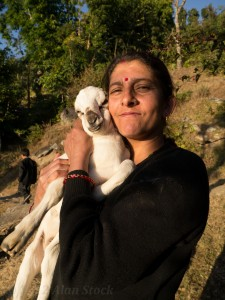Januka (Jabraj's wife) and her beloved goat kid!